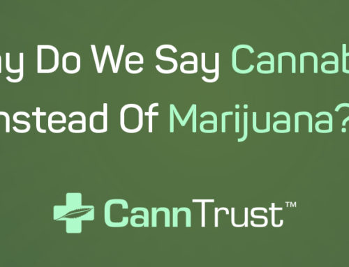 Cannabis Versus Marijuana