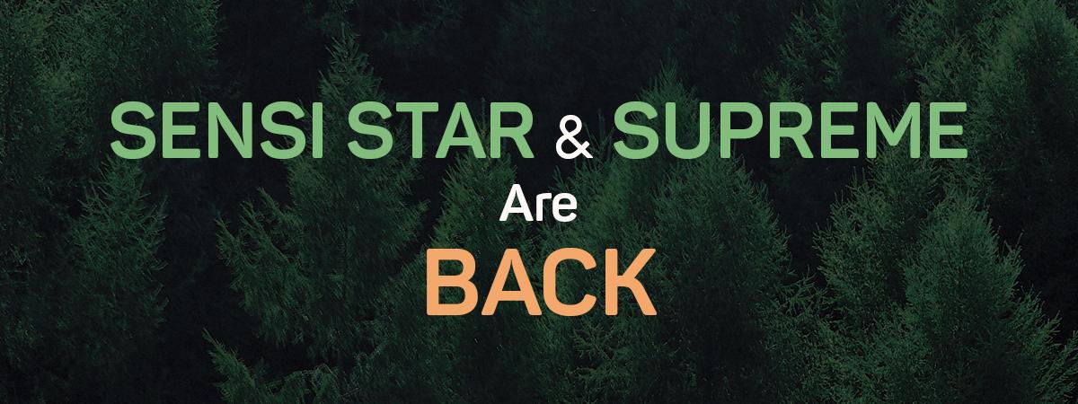 Sensi Star and Supreme Formula Are Back