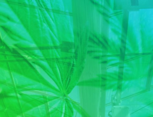 CannTrust Provides Business Update