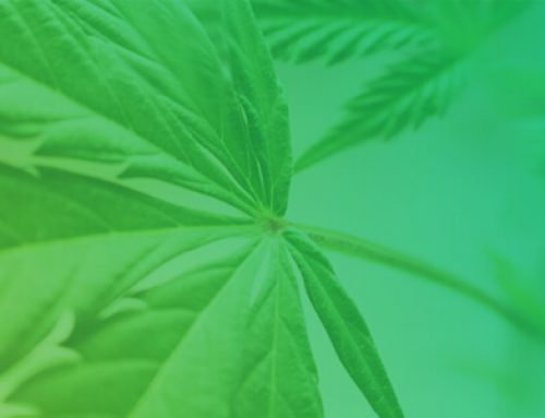 CannTrust Applies to List on NYSE